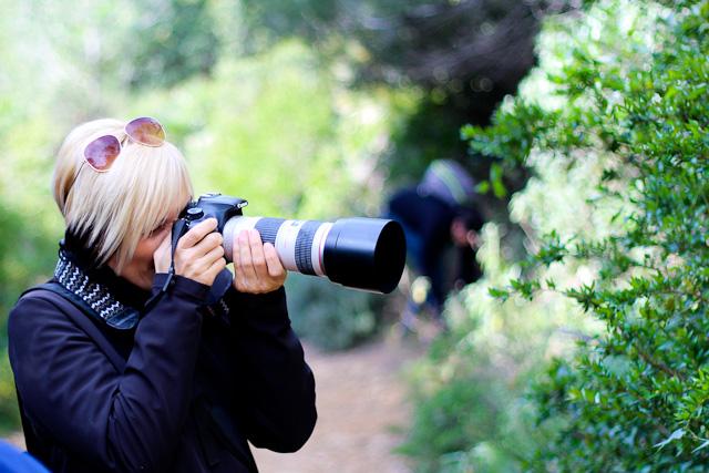 ANDANAfoto tu mirada a la naturaleza 2
